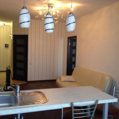 Квартира на сутки Дрибин